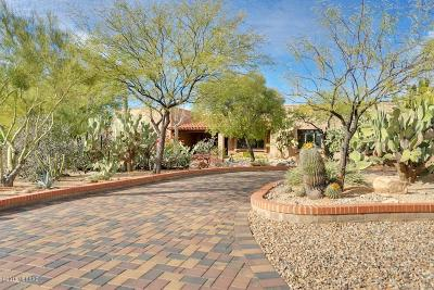 Tucson Single Family Home For Sale: 5721 N Paseo Niquel