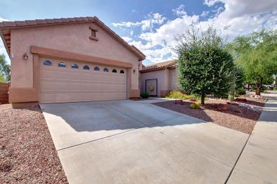 Tucson Single Family Home For Sale: 5133 N Pelican River Way