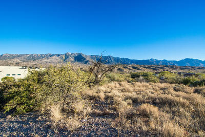 Tucson Residential Lots & Land For Sale: 16435 N Lago Del Oro Parkway