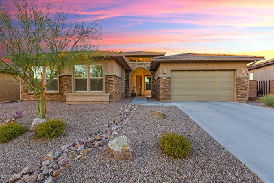 Marana Single Family Home For Sale: 6464 W Whispering Windmill Lane
