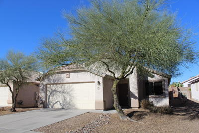 Tucson Single Family Home For Sale: 2631 W Cezanne Circle