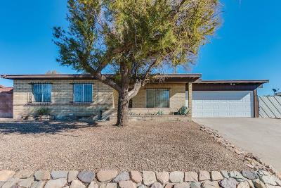 Tucson Single Family Home For Sale: 7476 N Oliver Avenue