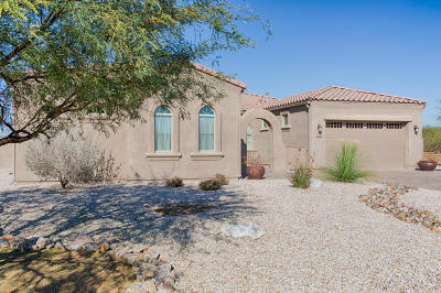 Tucson Single Family Home For Sale: 13032 W Sandhill Sage Place
