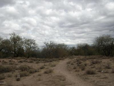 Tucson Residential Lots & Land For Sale: N Quesnel Loop #-