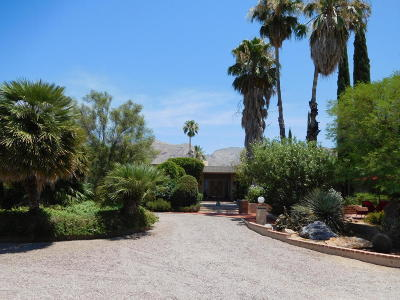 Tucson Single Family Home For Sale: 7101 N Corrida De Venado