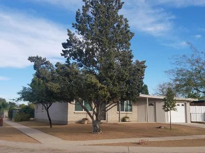Single Family Home For Sale: 5901 S Aldorn Drive