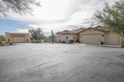 Tucson Single Family Home For Sale: 10221 N Blue Bonnet Road