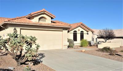 Tucson Single Family Home For Sale: 63394 E Desert Crest Drive