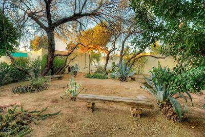 Tucson Single Family Home For Sale: 2401 E Elm Street