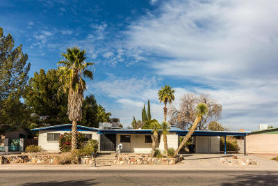 Tucson Single Family Home For Sale: 9009 E 29th Street