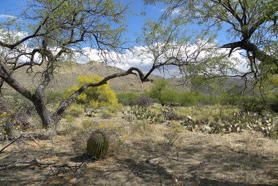 Tucson Residential Lots & Land For Sale: 5089 N Melpomene Way
