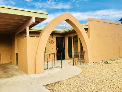 Tucson Single Family Home For Sale: 9311 E Lurlene Drive