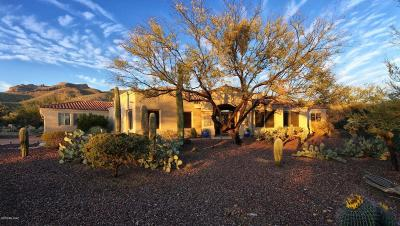 Tucson Single Family Home For Sale: 5080 N Sabino Springs Drive