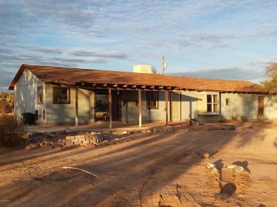 Tucson Single Family Home For Sale: 4900 W Greenock Drive