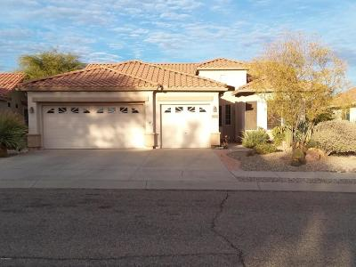 Continental Ranch Sunflower Single Family Home Active Contingent: 8072 W Whispering Dove Way
