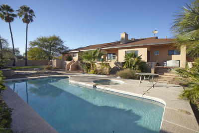Tucson Single Family Home For Sale: 6080 N Sabino Shadow Lane