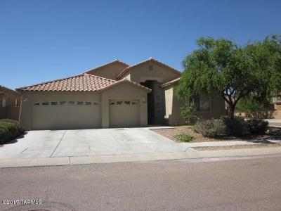 Tucson Single Family Home For Sale: 7061 W Fall Garden Way