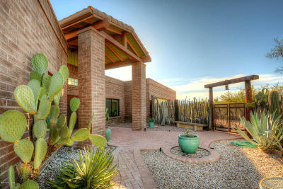 Tucson Single Family Home For Sale: 3724 N Soldier Trail