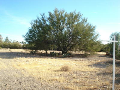 Residential Lots & Land For Sale: 2773 S Desert Hawk Place #0031