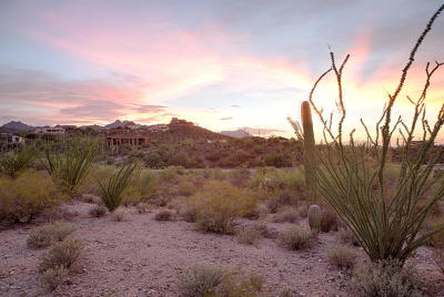 Tucson AZ Residential Lots & Land For Sale: $139,900