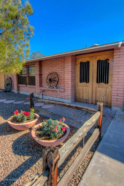 Tucson Single Family Home For Sale: 4807 W Red Wolf Drive