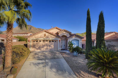 Single Family Home For Sale: 8340 N Austin Nikolas Court