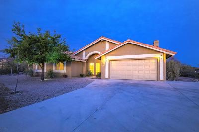 Tucson Single Family Home For Sale: 5750 W Placita Del Risco