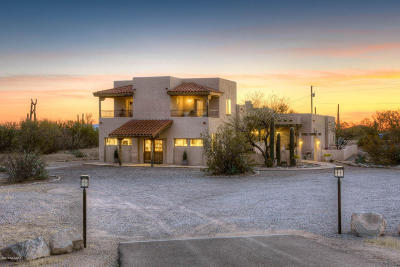 Tucson Single Family Home For Sale: 3965 W Moore Road