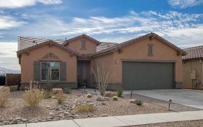 Vail Single Family Home For Sale: 10359 S Tea Wagon Way