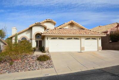 Single Family Home For Sale: 1690 W Sunridge Drive