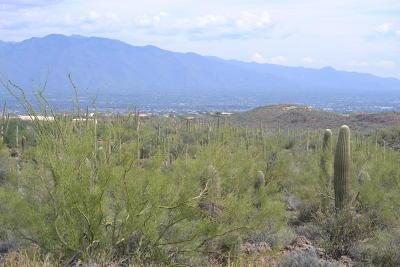 Tucson Residential Lots & Land For Sale: 3951 N Avenida Dos Vistas #8J