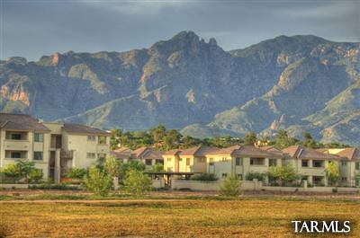Tucson Condo For Sale: 2550 E River Road #7104