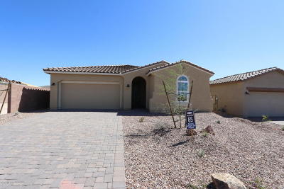 Marana Single Family Home For Sale: 7631 W Laurel Lane