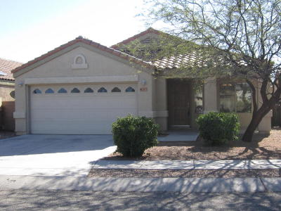 Tucson Single Family Home For Sale: 2873 N Ramie Place