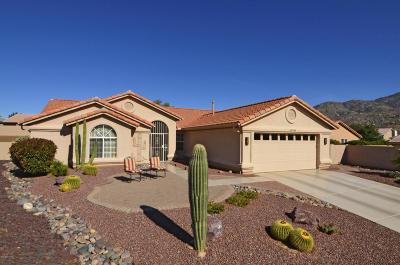 Saddlebrooke, Saddlebrooke Ranch Single Family Home For Sale: 65784 E Solarwind Court