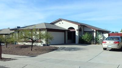 Tucson Single Family Home For Sale: 2620 S Pace East Drive