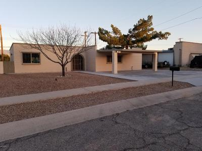 Tucson Single Family Home For Sale: 2225 S Ave Guillermo