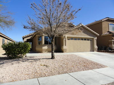 Tucson Single Family Home For Sale: 8349 S Egyptian Drive