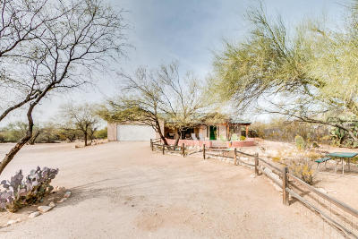 Pima County, Pinal County Single Family Home For Sale: 4311 N Lason Lane