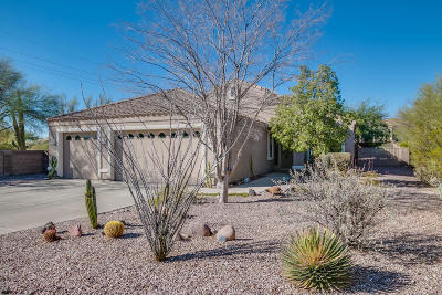 Oro Valley Single Family Home For Sale: 11215 N Via Rancho Naranjo