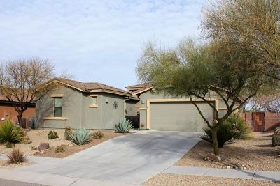 Pima County, Pinal County Single Family Home For Sale: 17395 S Indigo Crest Pass