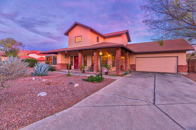 Tucson Single Family Home For Sale: 4360 N Ventana Loop