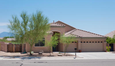 Marana Single Family Home For Sale: 12852 N Bass Canyon Drive
