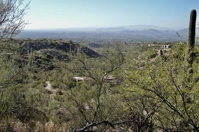 Tucson Residential Lots & Land Active Contingent: 7351 N Secret Canyon Drive #48