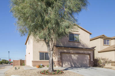 Pima County, Pinal County Single Family Home For Sale: 7892 S Baja Stone Avenue