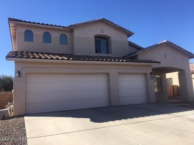 Tucson Single Family Home For Sale: 3551 N Banner Mine Drive