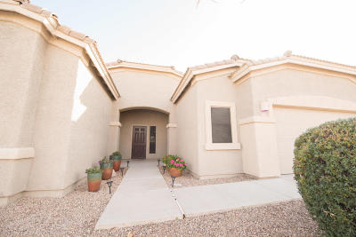 Pima County, Pinal County Single Family Home For Sale: 515 S Blue River Loop