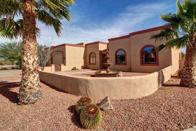 Sahuarita Single Family Home For Sale: 17851 S Camino De Loreto