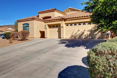 Tucson Single Family Home For Sale: 3287 S Prism Sky Drive