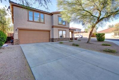 Tucson Single Family Home For Sale: 3427 N Green Gulch Court